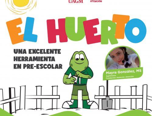 EL HUERTO – una excelente herramienta en pre-escolar